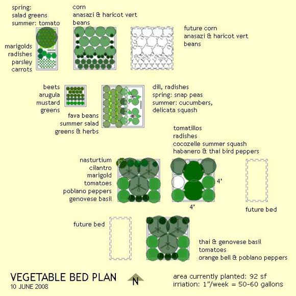 Summer 2008 vegetable garden plan less is more for Summer vegetable garden