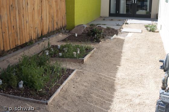 Gravel mulch in side yard